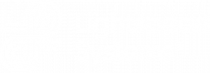 Lightspeed Systems Stacked white logo